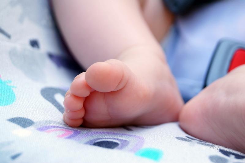 2-rozwój-dziecko-6 miesiac-lifebymada